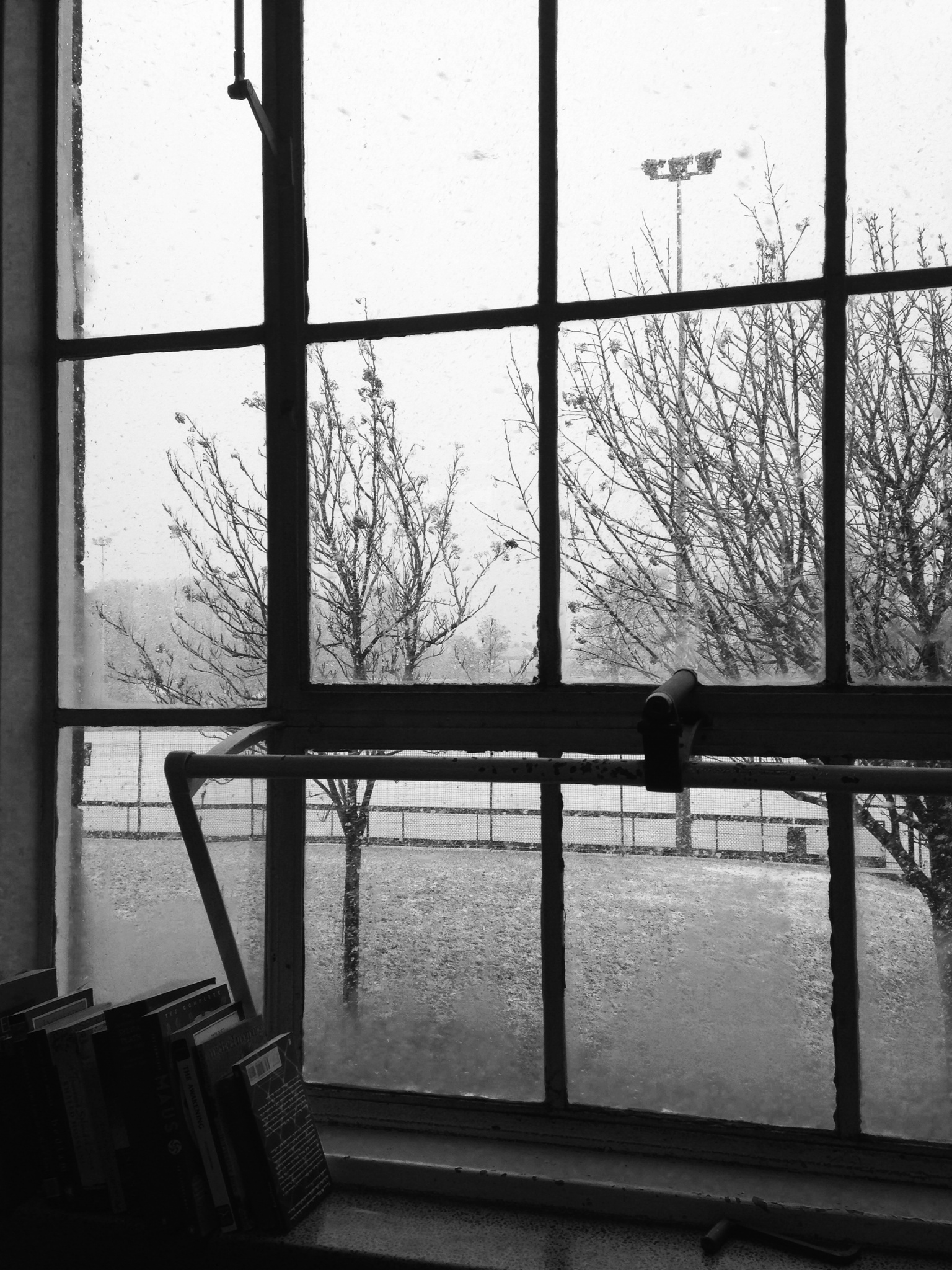 Snow. From my classroom window